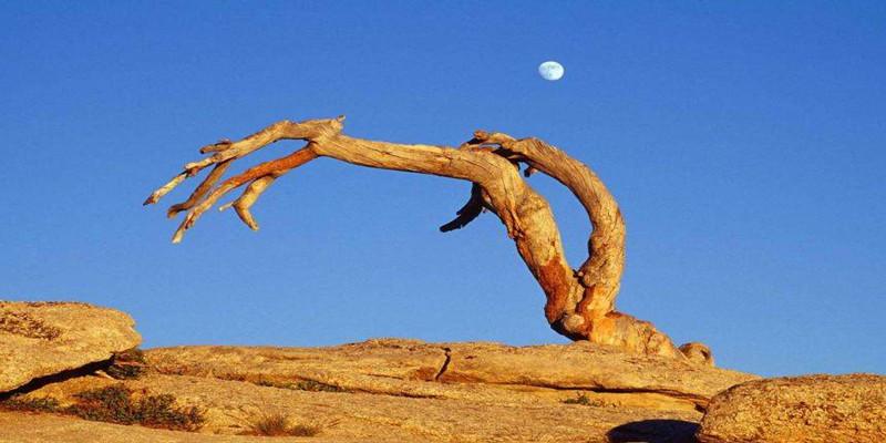 美国黄石公园旅游全攻略